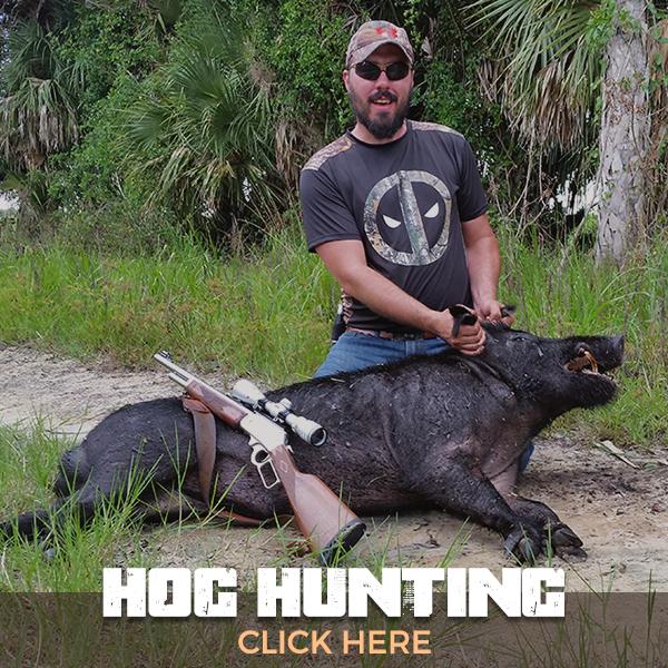 Trophy Florida Gator Hunting By Get Bit Outdoors Gator Wind Boar And Wild Turkey Hunting